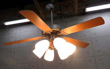 吊り照明 DP-35203 DP-37980